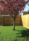 Ludlow Fencing & Landscaping Ltd